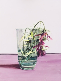 Dane Lovett still life (cosmos) 2013